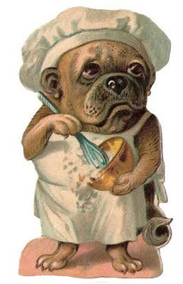 A pug in the kitchen via pinterest