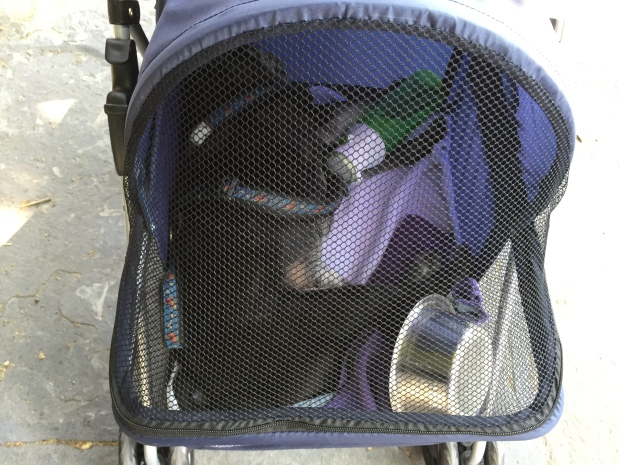 Nando in the stroller