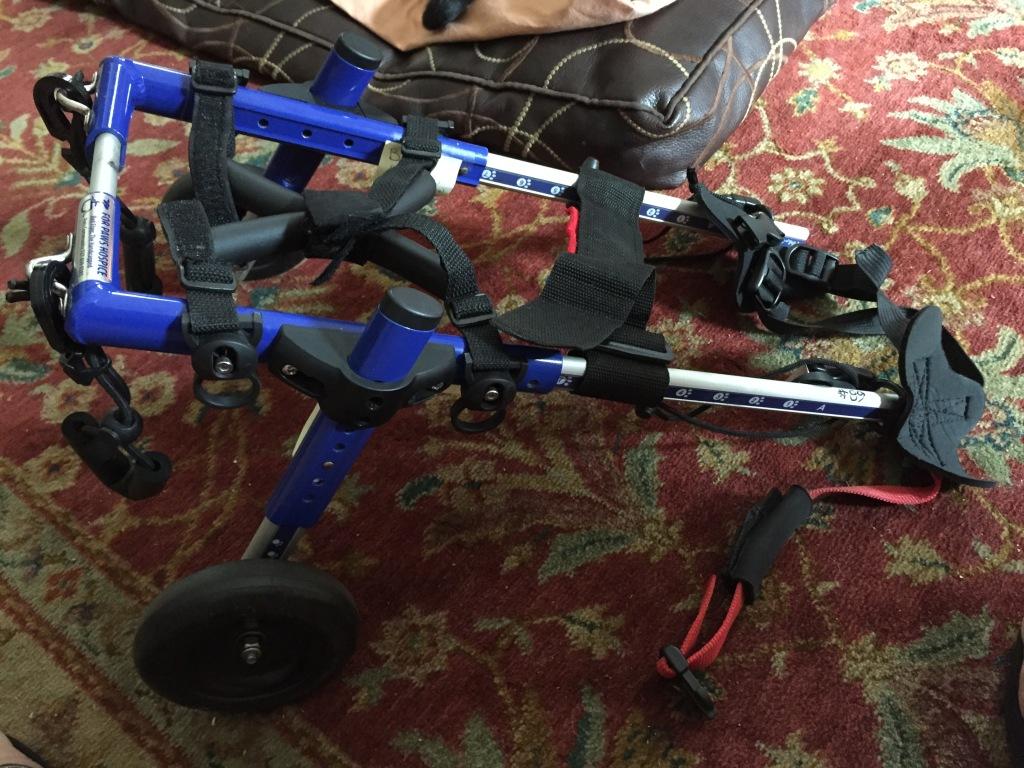 Nando's wheelchair