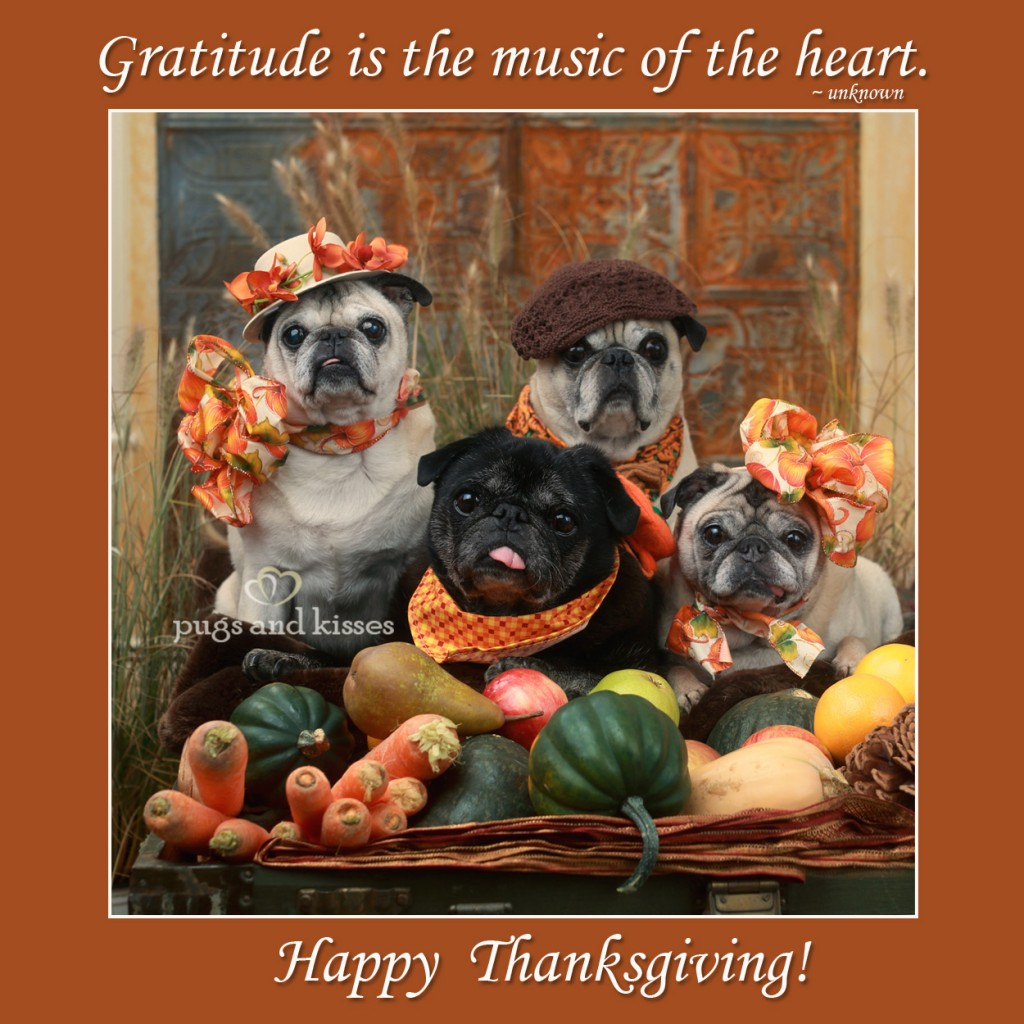 Whole-Gang-Thanksgiving-2012-Gratitiude-saying-P+K1-1024x1024