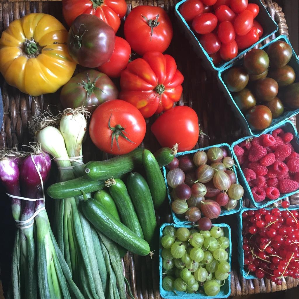 Green Market Haul